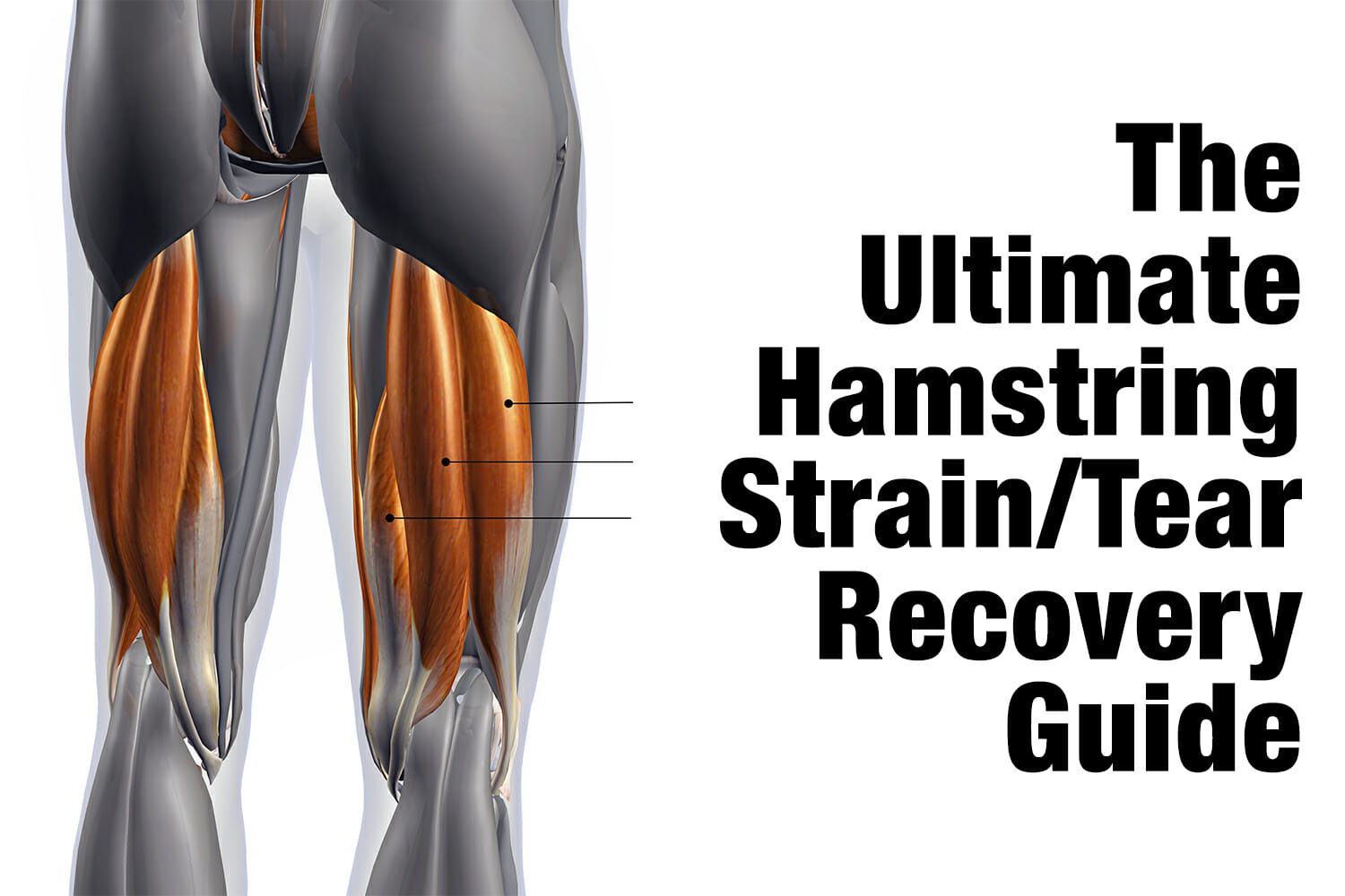 The Ultimate Hamstring Strain Tear Recovery Guide Kabuki Strength